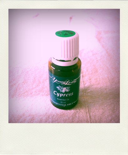 Uma-Enlightenment_Cypress